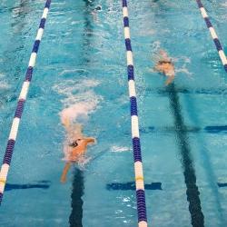 Uinti on erinomainen liikuntamuoto