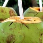 8 hyvää syytä juoda kookosvettä