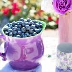 Mustikka on vähäkalorinen terveyspommi
